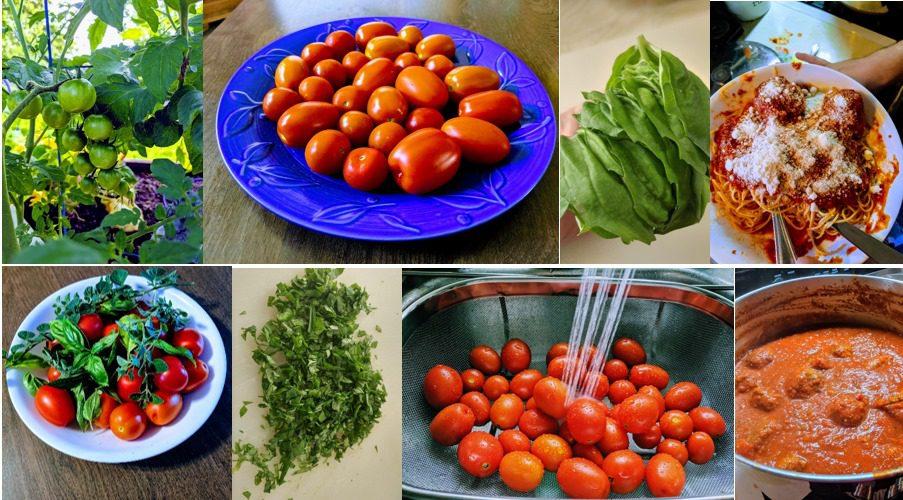The Recipe Garden